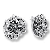 Oбици с камъни от сребро - 122861